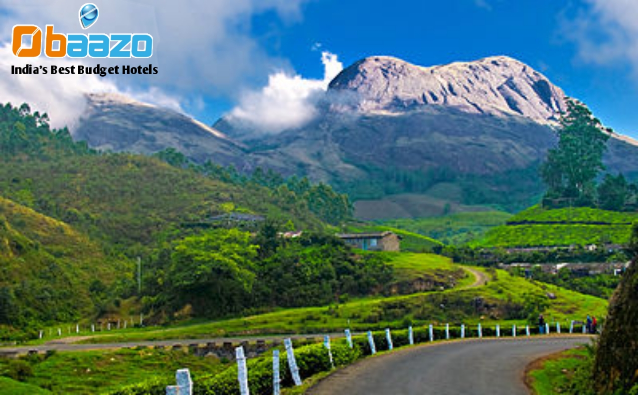 http://res.cloudinary.com/dyyjph6kx/image/upload/f_auto/v1516272671/blog/places_to_visit_in_Munnar_in_1_day_-_Munnar-1.jpg