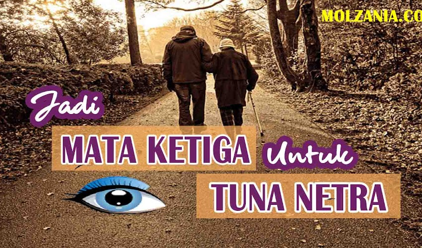 Review Aplikasi Smartphone Pembantu Tuna Netra Be My Eyes