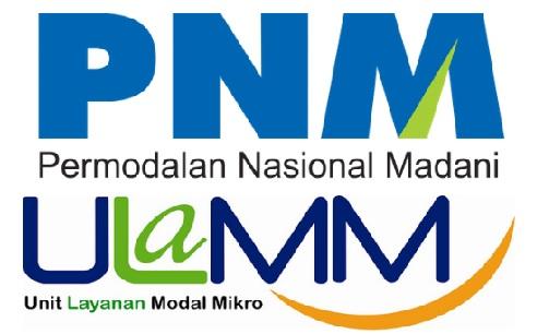 LOWONGAN KERJA BUMN PNM 2017