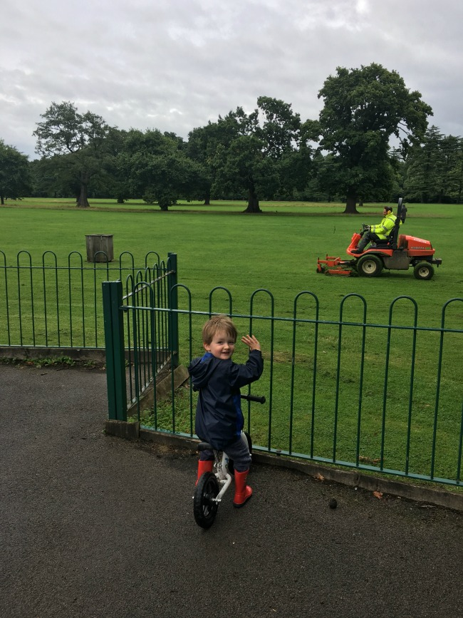 our-weekly-journal-14th-august-2017-toddler-watching-man-cutting-the-grass