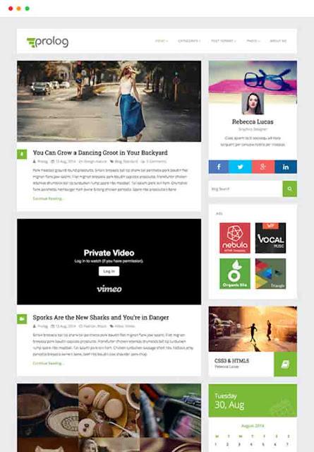Pro log wordpress theme free Download