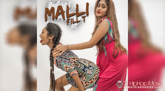Malli  - Fill T