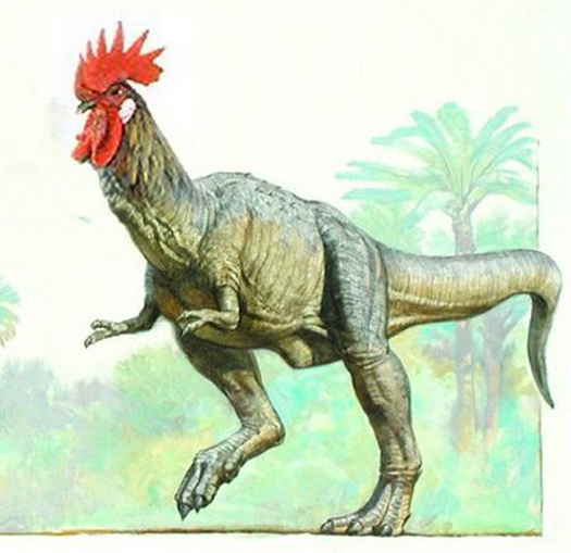 iMoo Daily: Weird Sceince: Chicken-O-Saurus