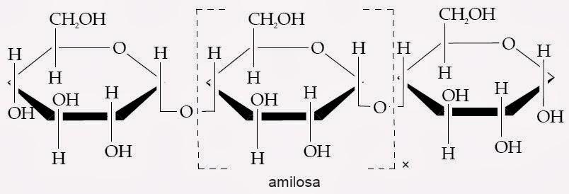 Pengertian Polisakarida Struktur Contoh Kegunaan Fungsi Kimia