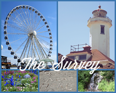 the survey, a weekend roundup on The 3 Rs Blog