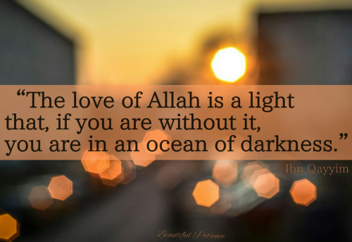 Allah Quotes - The love Allah is a light that, if you are without it