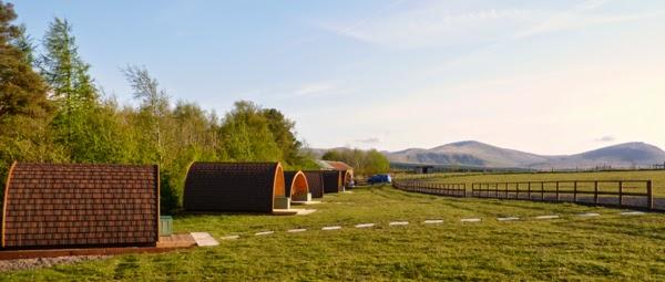 case in legno Pod