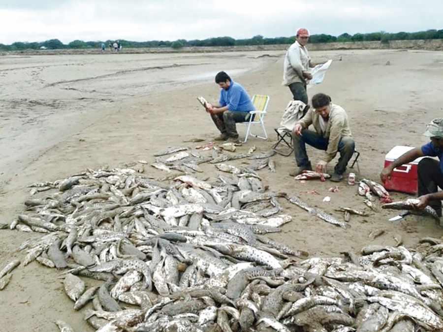 Advierten falta de control en la pesca del r�o Pilcomayo