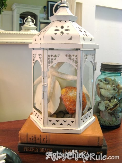 Beach Lanterns Display Shells Amp Sea Life In A Decorative