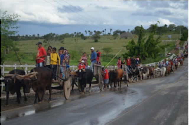 Dia do Carreiro em Inhapi é comemorado oficialmente no dia 31 de julho