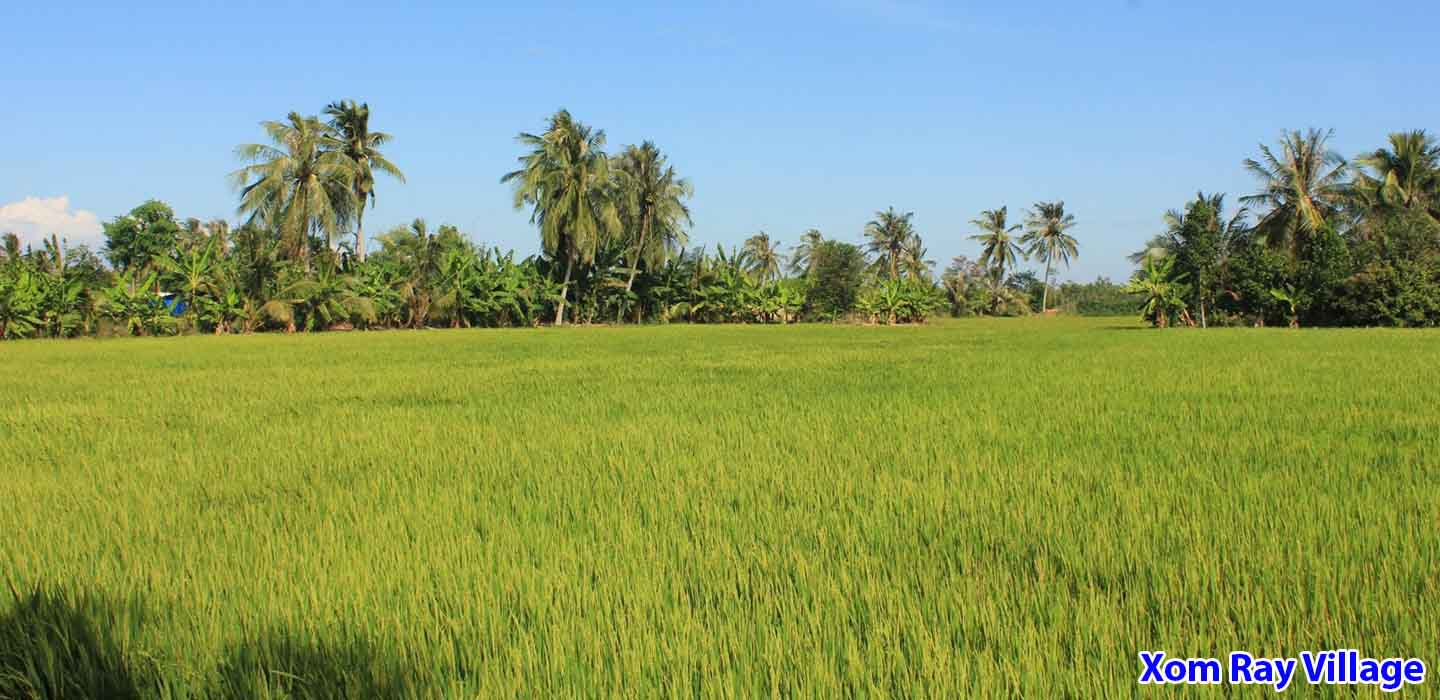 real-mekong-delta-tour-Xom-Ray-Village