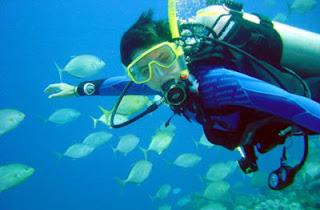 Scuba diving di Tanjung benoa Bali