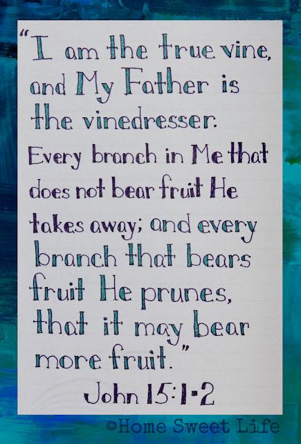 Scripture Writing, John 15:1-2