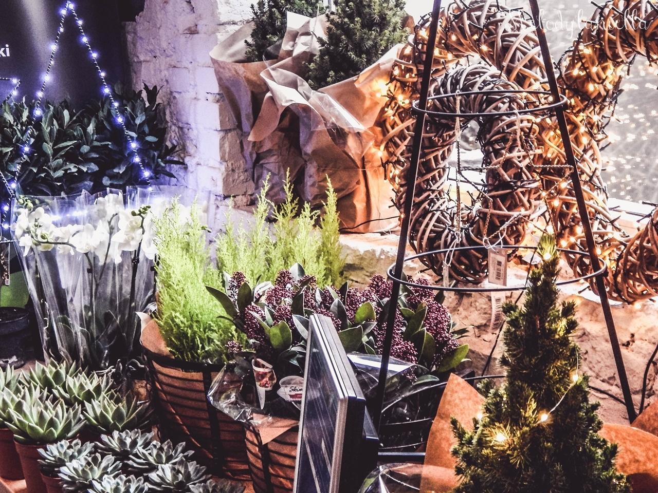 30 nietypowy jarmark świąteczny piotrkowska 217 co dzieje się w łodzi dwukropek ogrody zofii bożonarodzeniowy jarmark targ świąteczny świat z lukru pierniki świąteczne łódź biżuteria handmade piando zigner