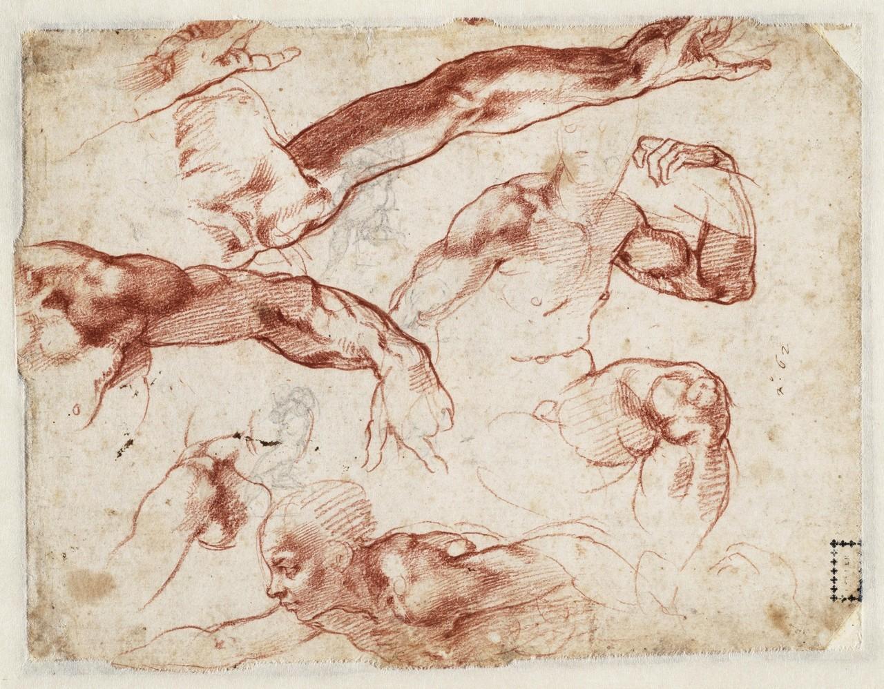 Spencer Alley: Michelangelo Drawings at Teylers Museum, Haarlem