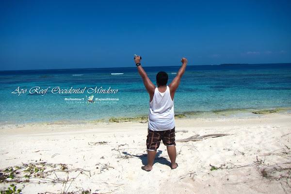 Apo Reef, Occidental Mindoro - Schadow1 Expeditions