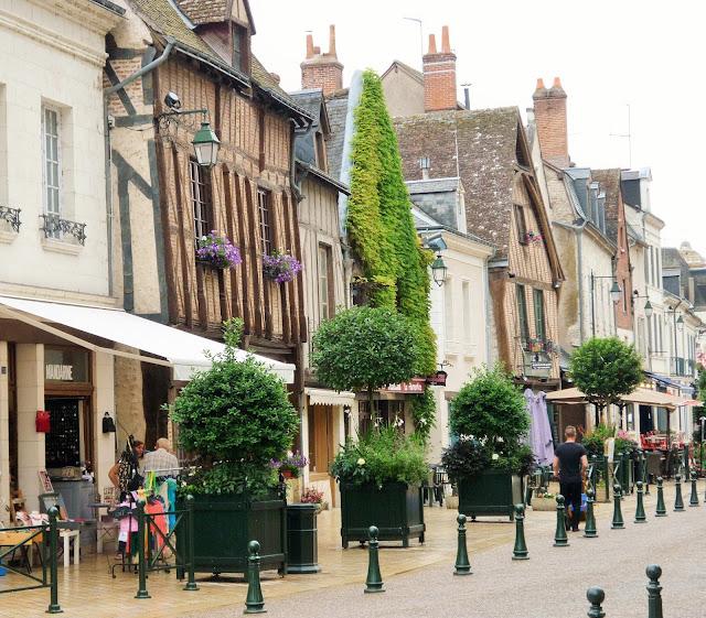 Château de la loire Amboise - ville