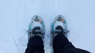 Raquettes, neige, pantalon de neige