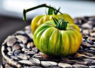 http://tomatprat.blogspot.no/2015/08/zebra-rita-tomat.html