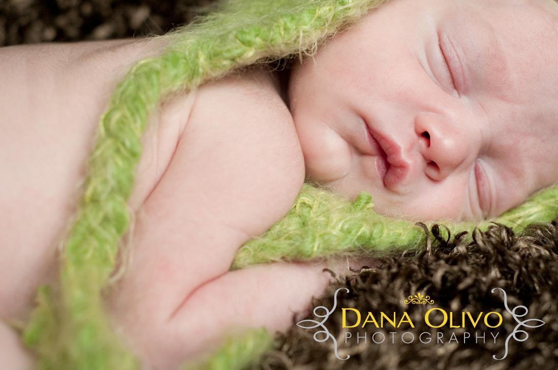 worcester, ma: newborn twin photographer | dana olivo