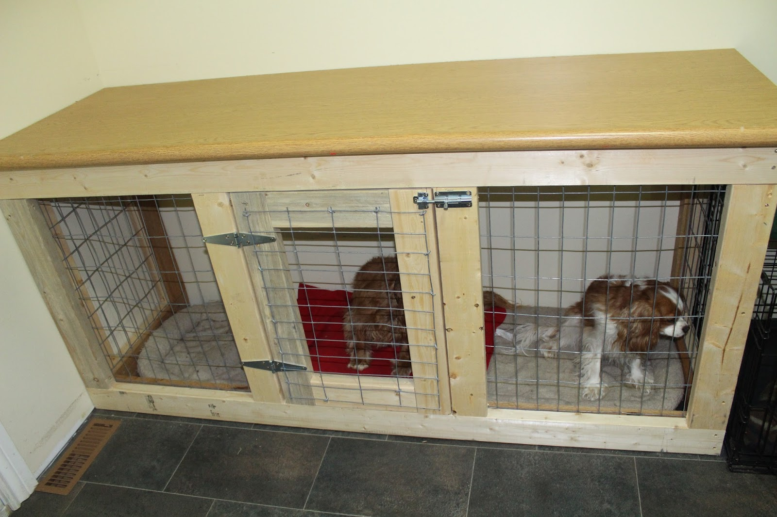He Used 2x4s For The Frame Fence Wire And Some S Oak Pieces To Cover Edges Of On Inside Kennel Countertop Though Not My