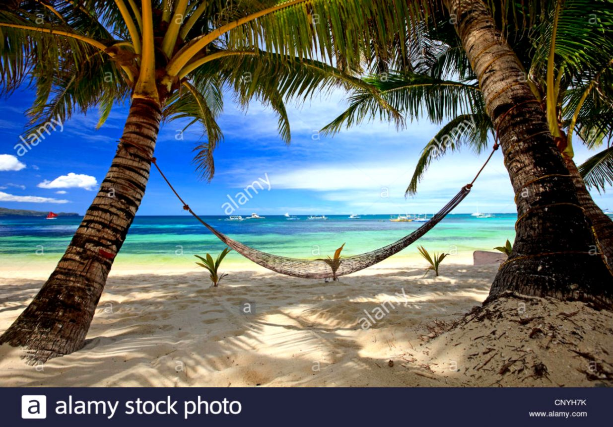 hammock between two palm trees at tropical beach Philippines