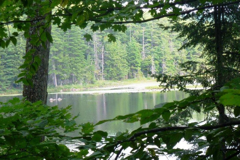 Gatineau Park Ottawa Canada