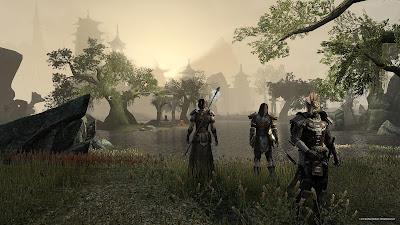 Elder Scrolls Online no tiene buen diseño