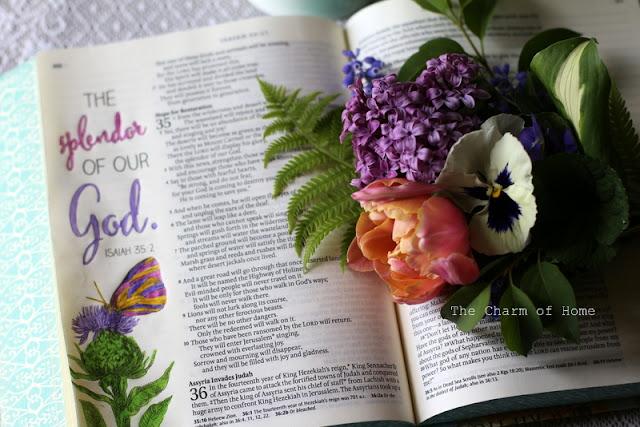 God's Splendor:The Charm of Home