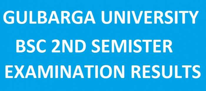 Gulbarga University BSc 2nd Sem Exam Result May 2018 @ indiaresults, gug.ac.in