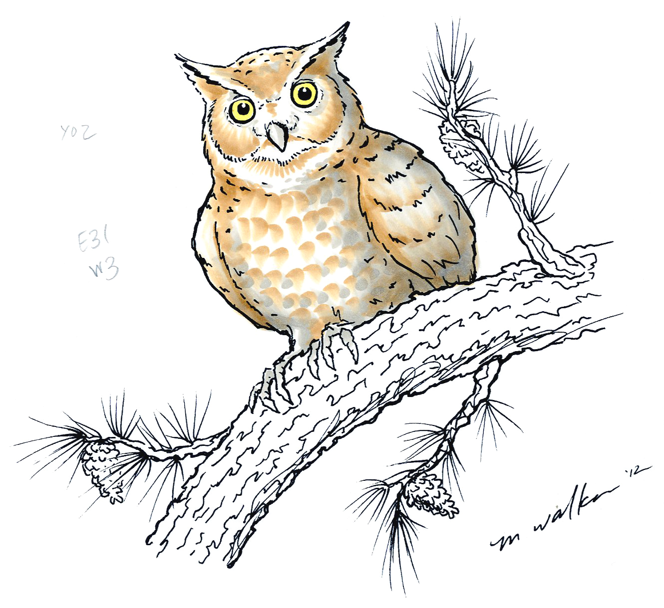 I Like Markers: Coloring an Owl