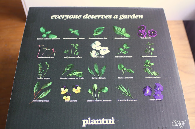 Setting Up Your Plantui Smart Garden Step 1 | Anyonita-Nibbles.co.uk