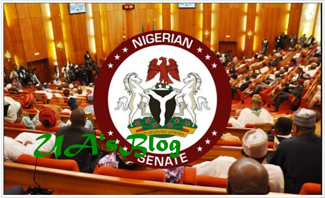 Senate confirms N13.5 million monthly allowance to Senators