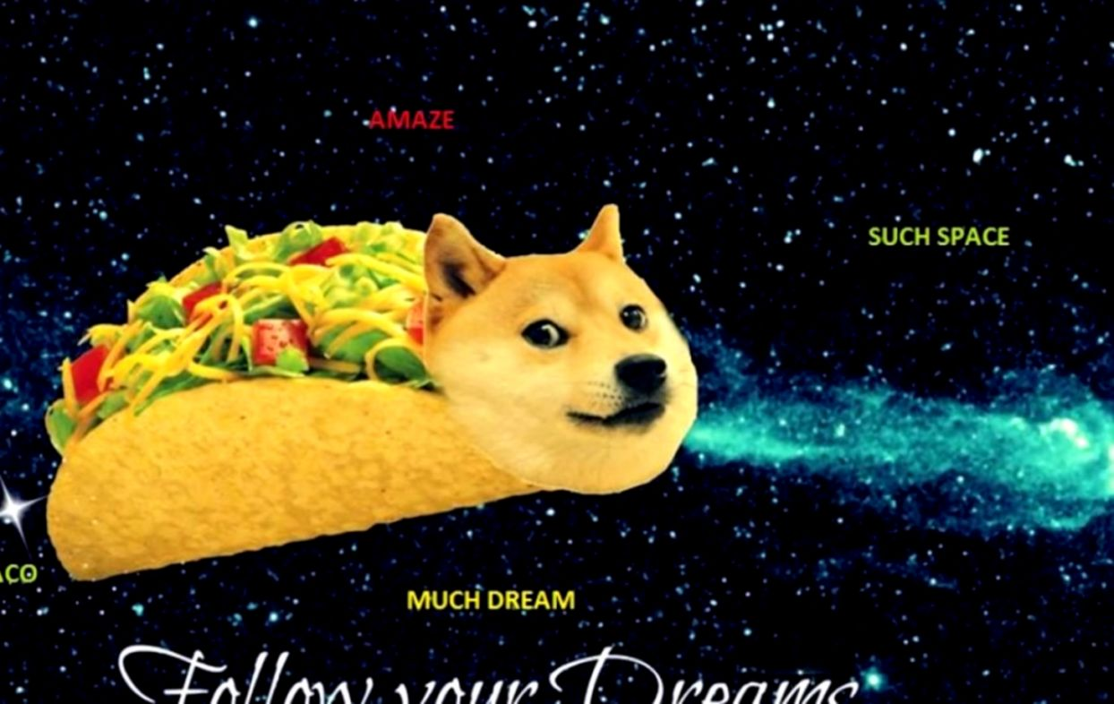 Doge 1080x1080 Elegant What Is Doge The History And Origin Of The