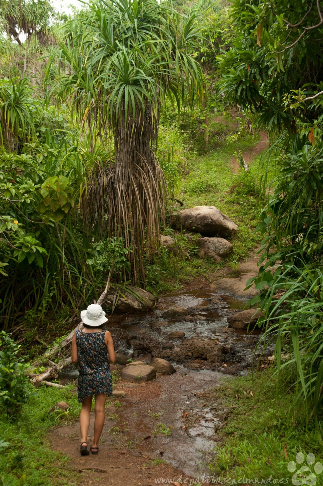 Sri Lanka hacia Jungle Beach