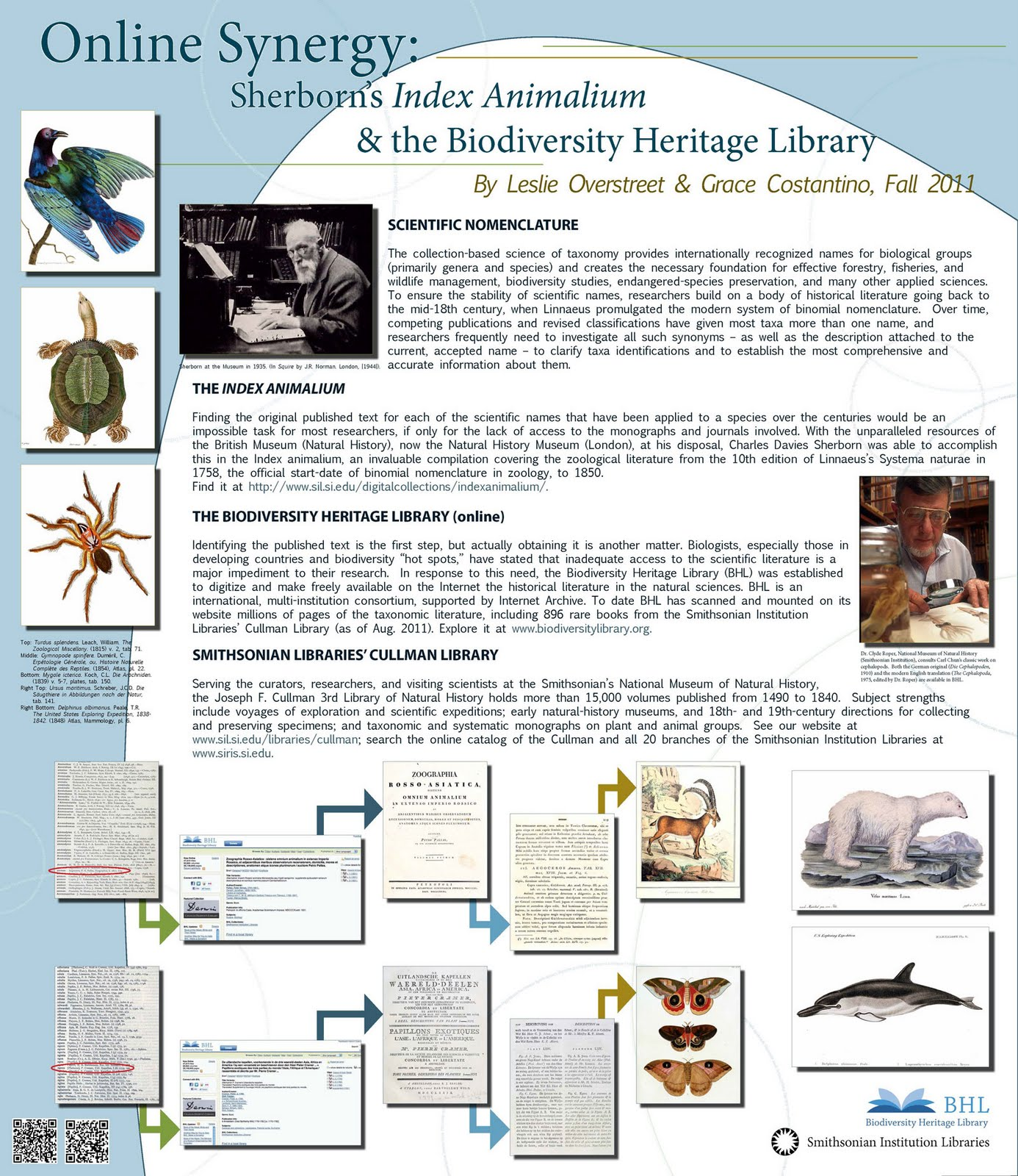 biodiversity heritage library 2011 finally the poster presented by grace costantino and leslie overstreet entitled ldquoonline synergy sherborn s index ani um and the biodiversity heritage