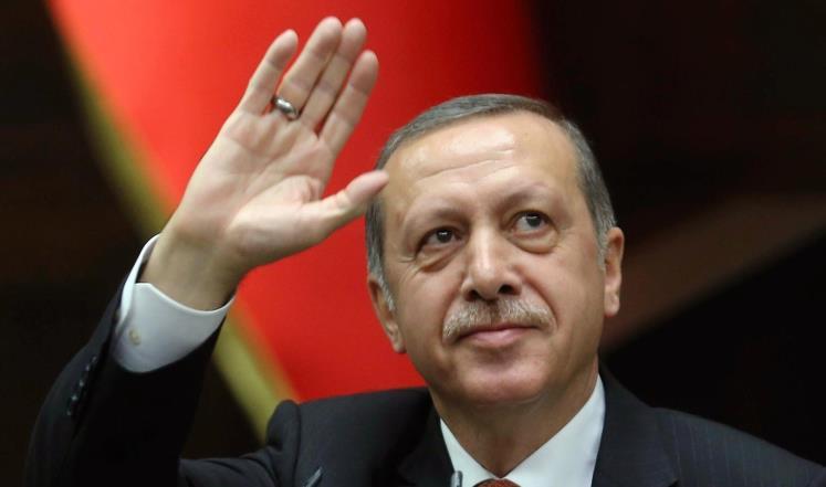 الرئيس الالماني شتاينماير قصة نجاح اردوغان مع تركيا تتعرض للخطر