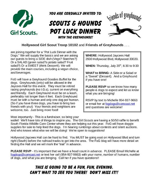 Scouts & Hounds flyer