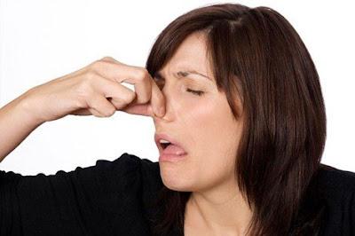 Consejos para eliminar los malos olores del hogar (I)