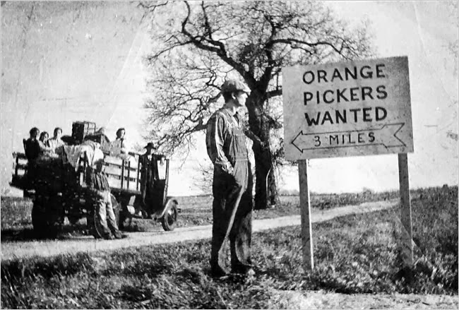 Image result for grapes of wrath