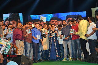 Nenu Local Audio Launch Stills  0419.JPG