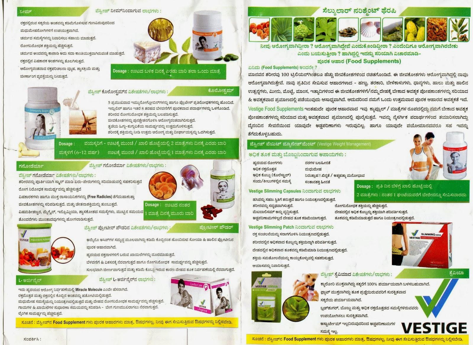 www my vestige business plan