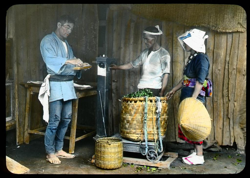 Chùm ảnh xưa về trà Nhật Bản 6