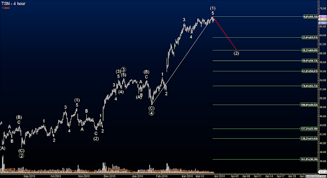 Elliott Wave Options Signals TSN