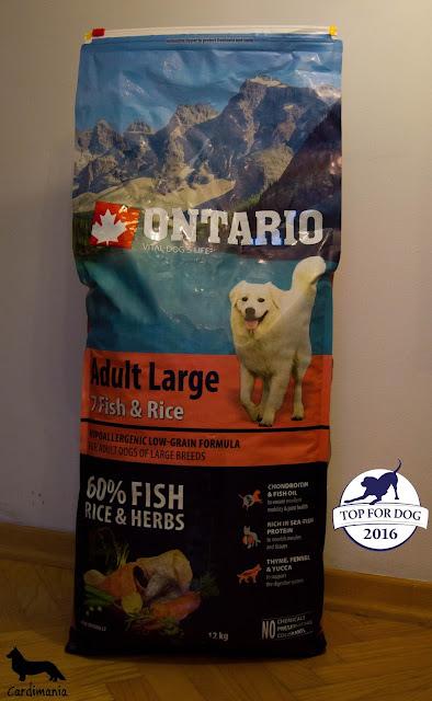 karma dla psów, dobra karma, czym karmi psa, sucha karma, mokra karma