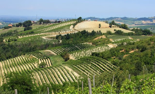 The Colli Tortonesi is a wine-growing region in Piedmont.