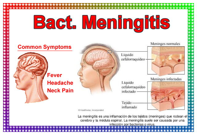 Bact. Meningitis