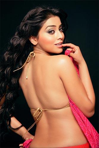 Shriya Saran Hot Photos Shriya Saran Hot Clevage Indian Actress Shriya Saran Hot Navel