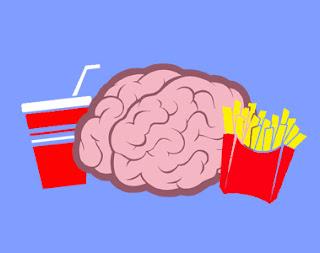 Comment la malbouffe ralentit votre mémoire ?