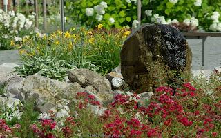 http://fotobabij.blogspot.com/2016/02/ogrod-biblijny-puawy-fontanna-i-roze.html
